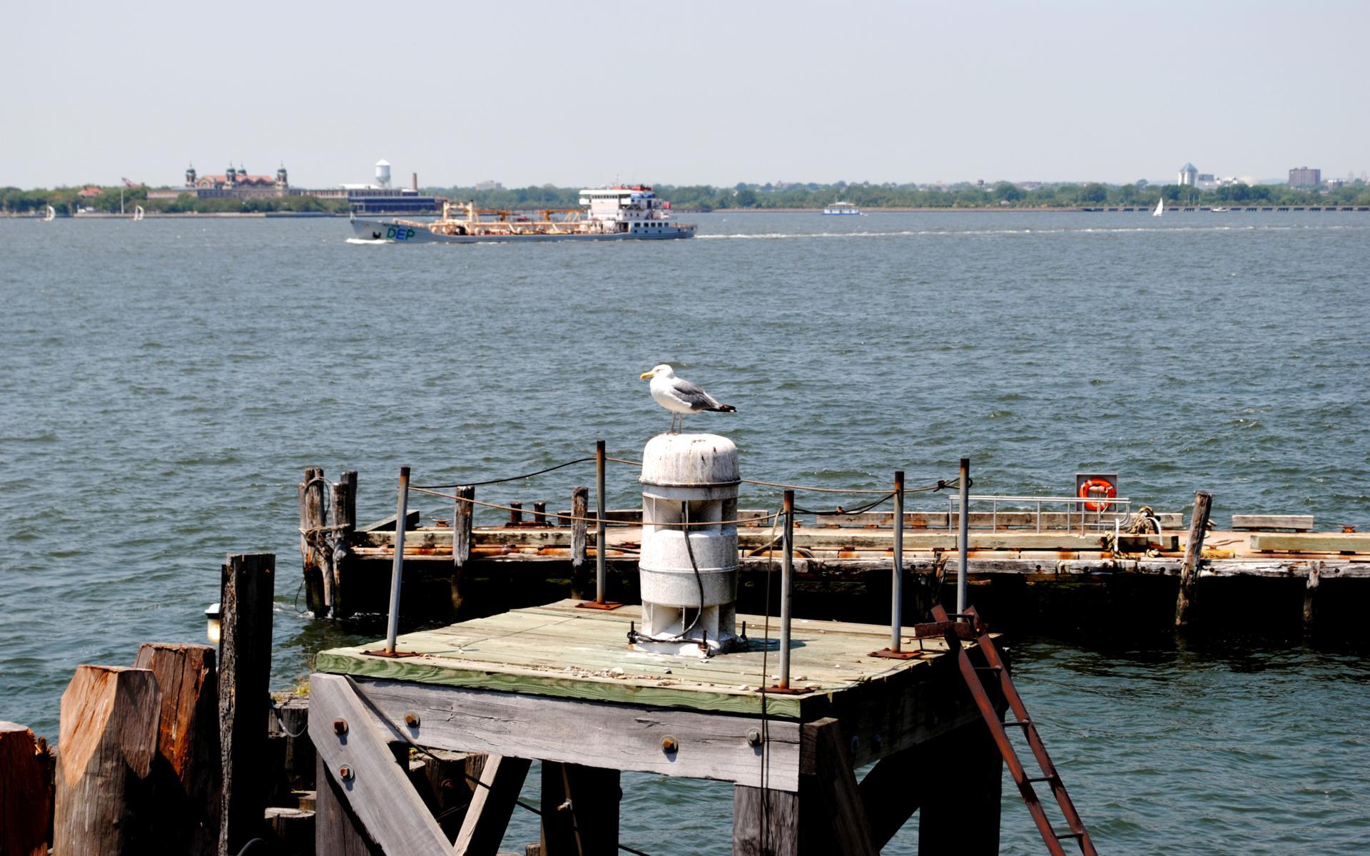 ferry staten