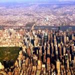 New York: Gallery