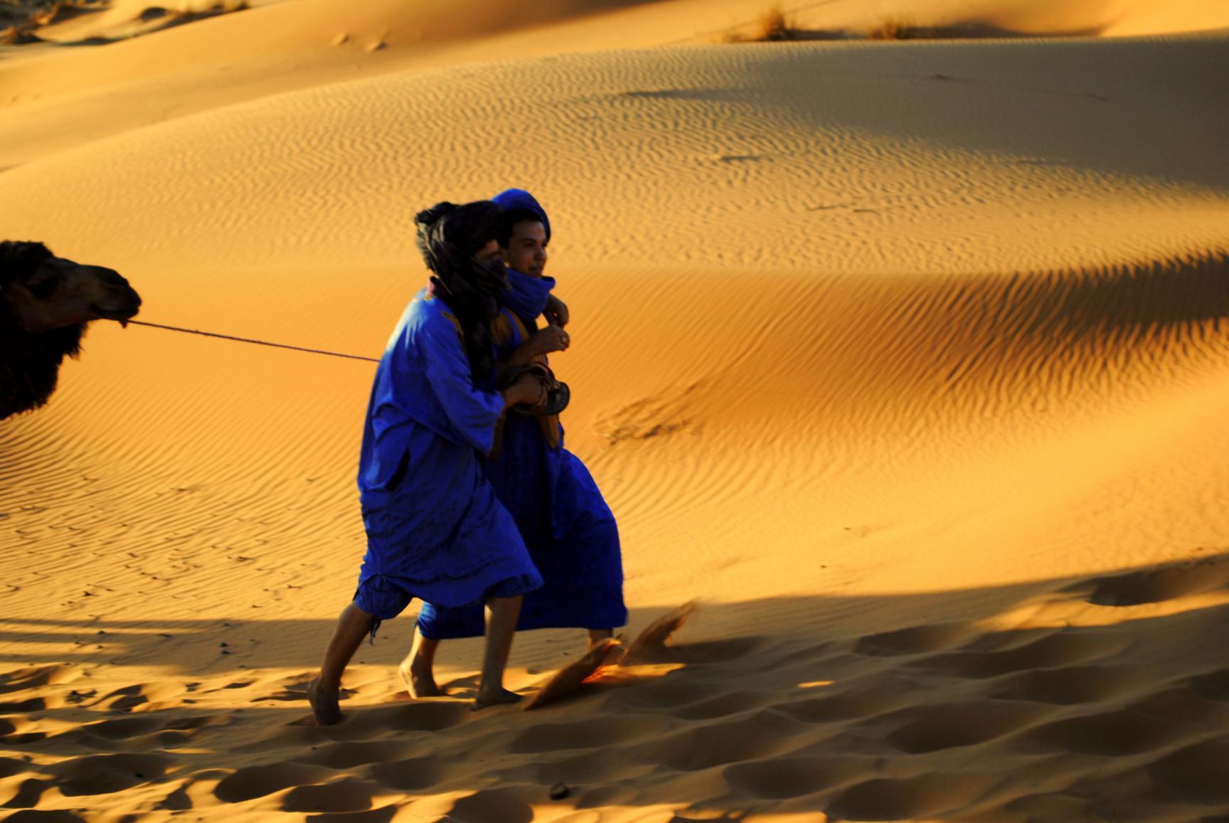 guias-desierto