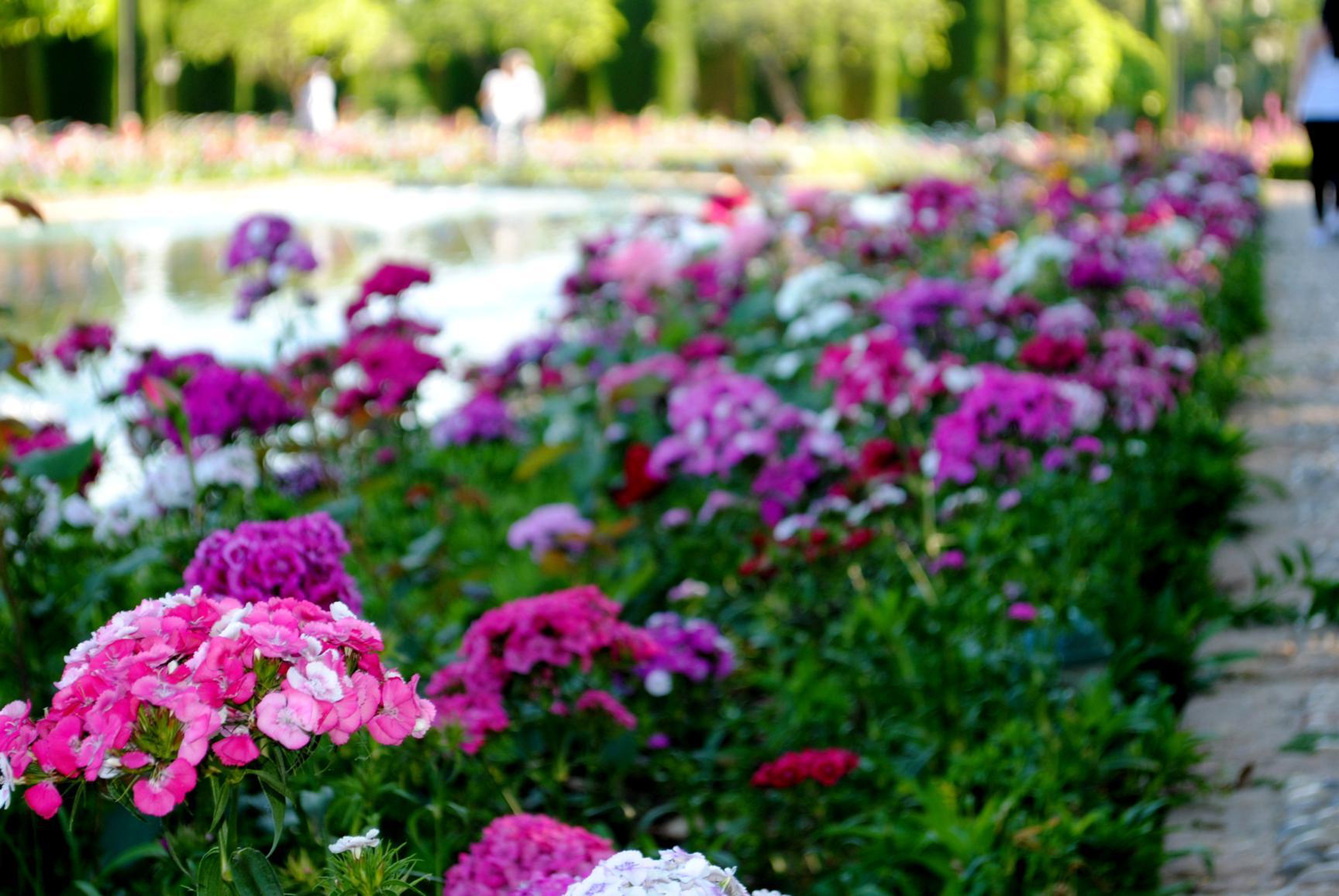 jardines-reales-4