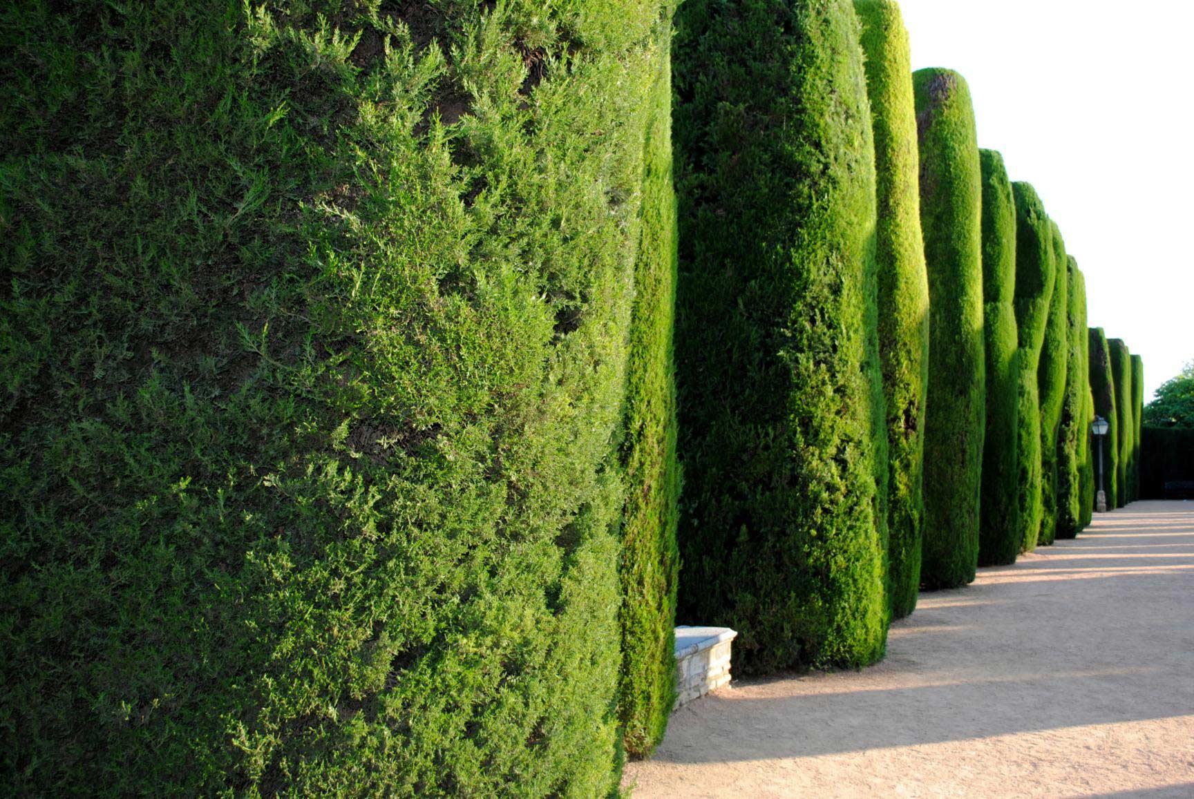 jardines-reales-8
