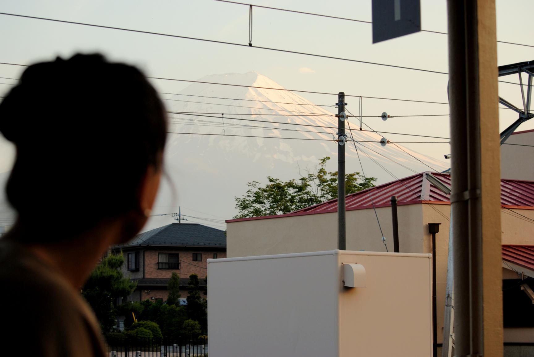 pagoda-chureito-4