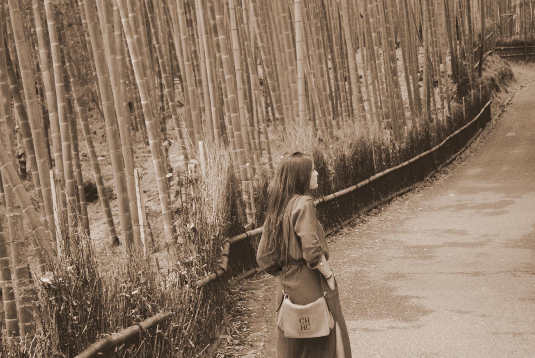 bosque-bambues-arashiyama-6