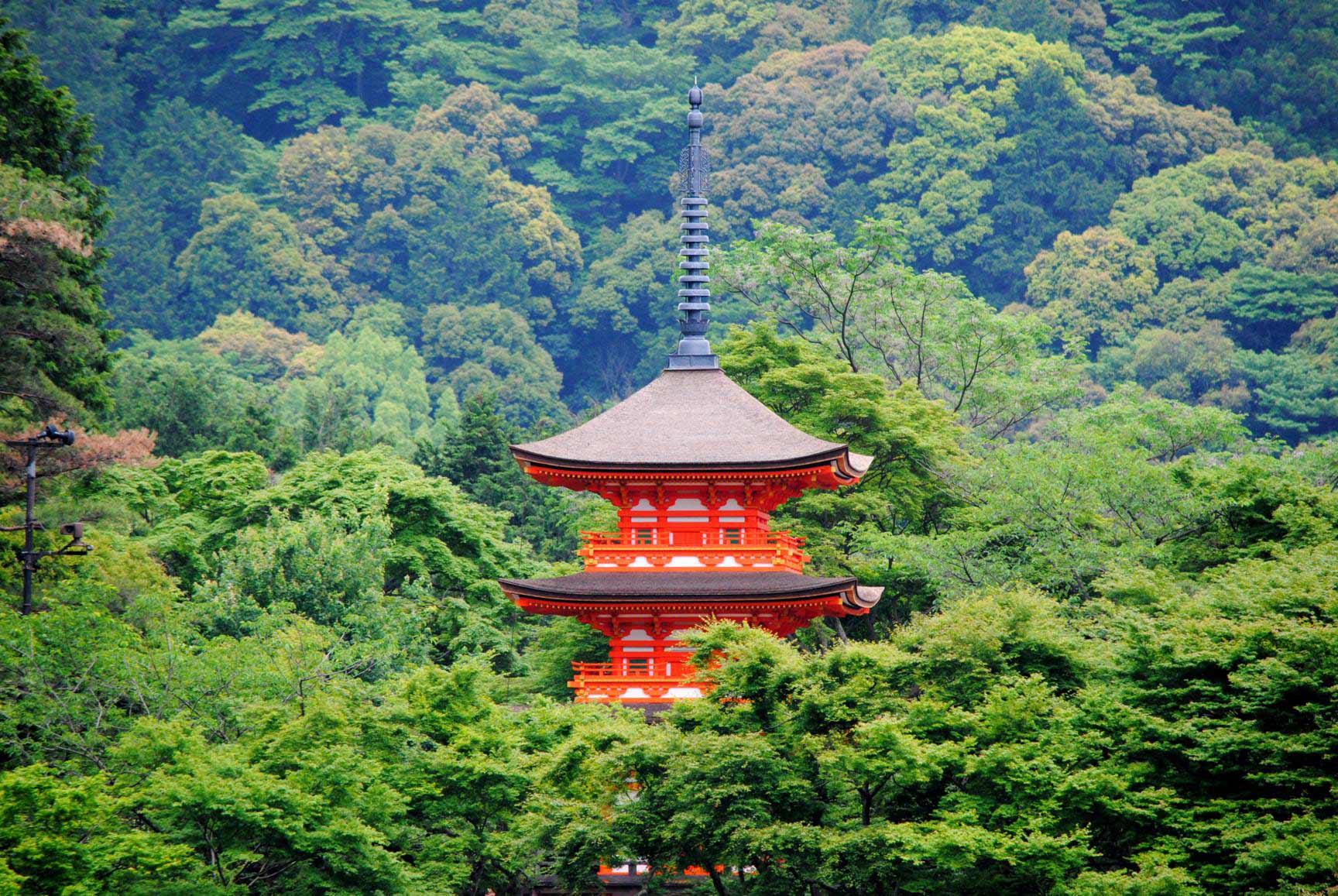 kiyomizu dera-8
