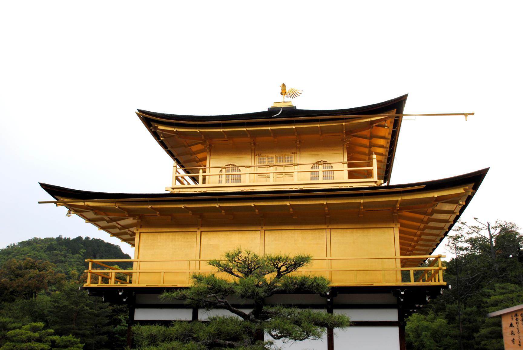templo oro-2