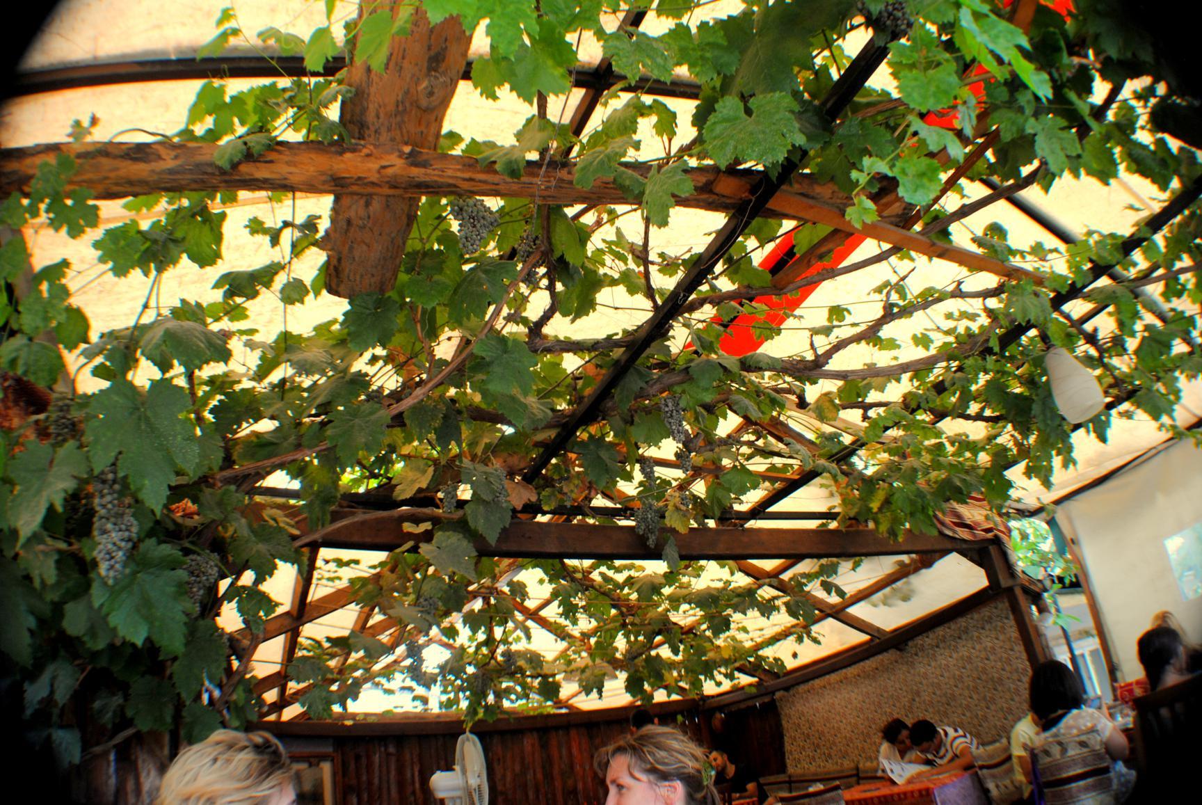 terrace-restaurant-goreme-6