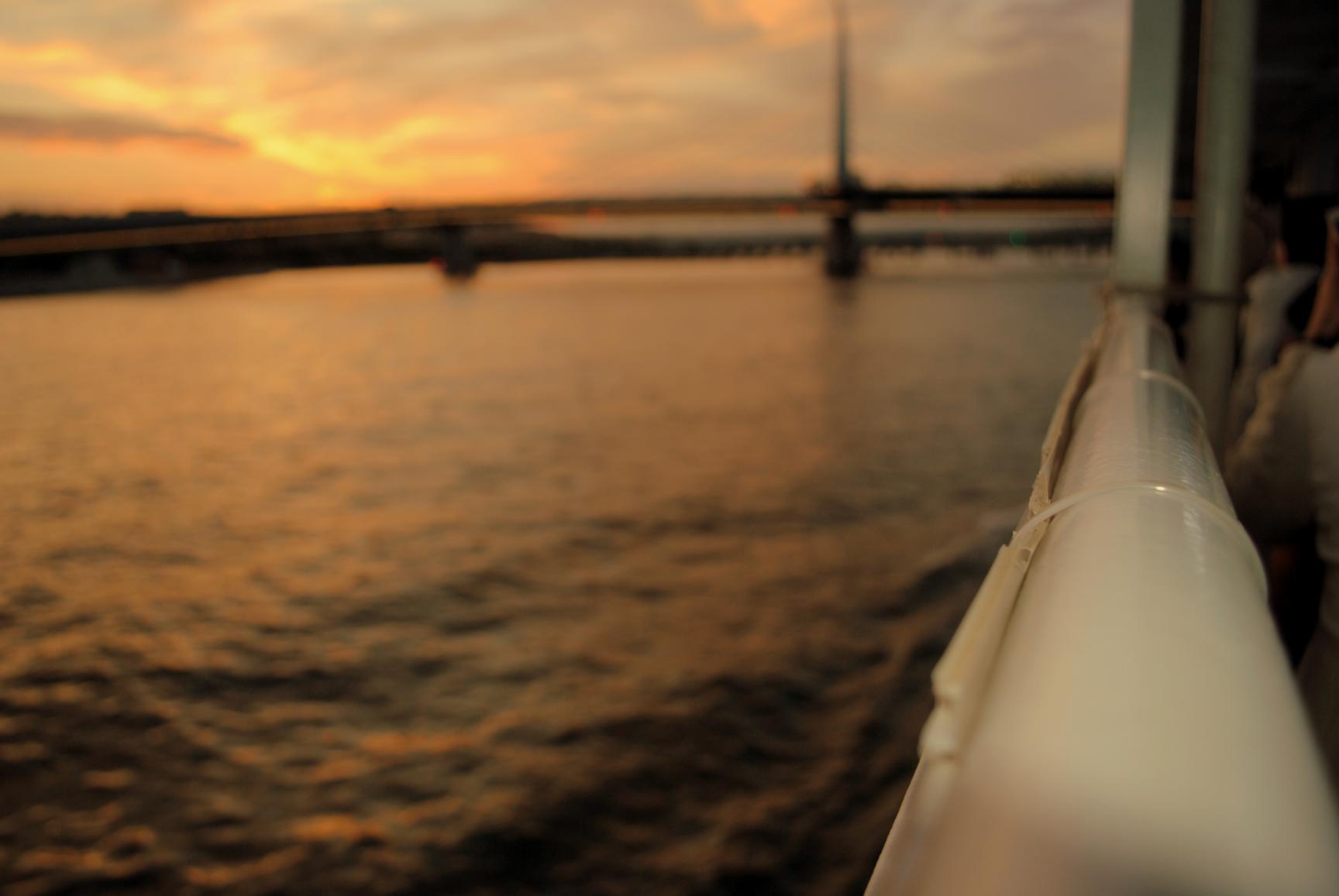 crucero-cuerno-oro-6