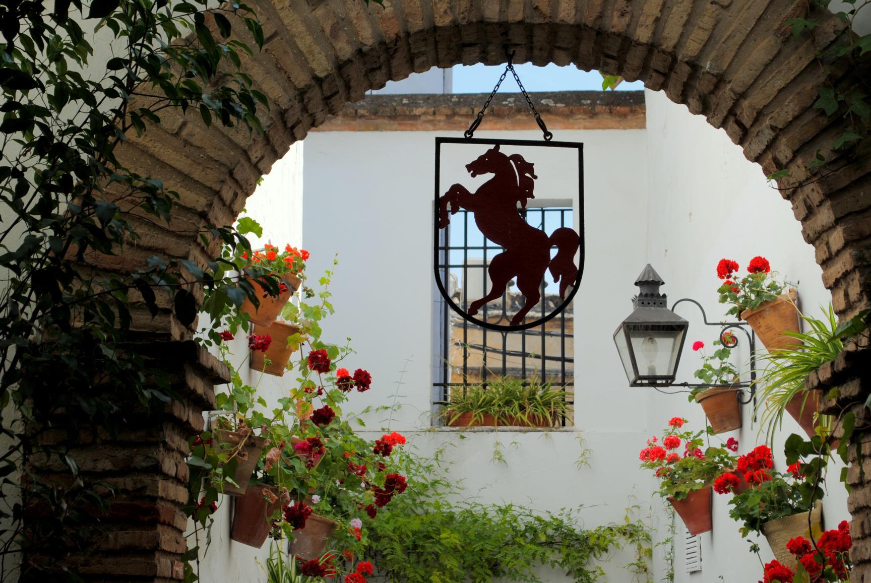 caballo-rojo-cordoba-4