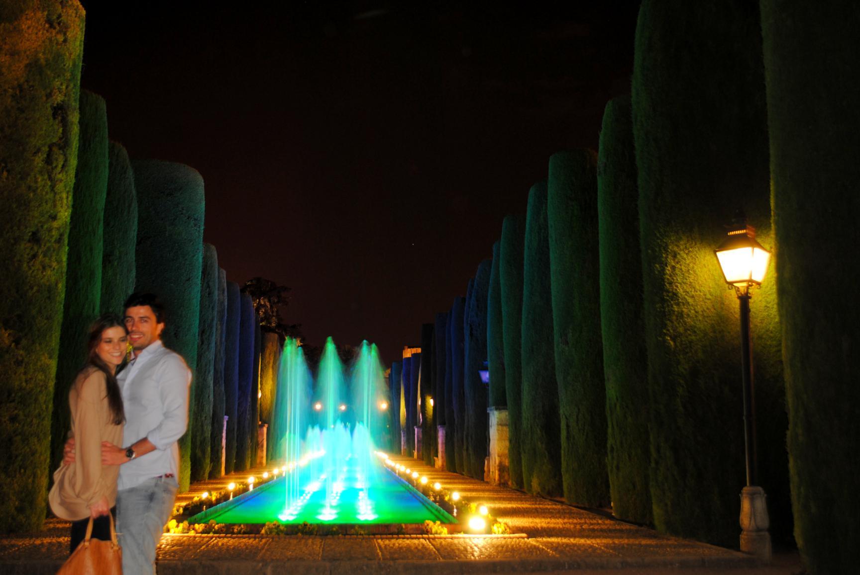 espectaculo-luz-sonido-alcazar-4