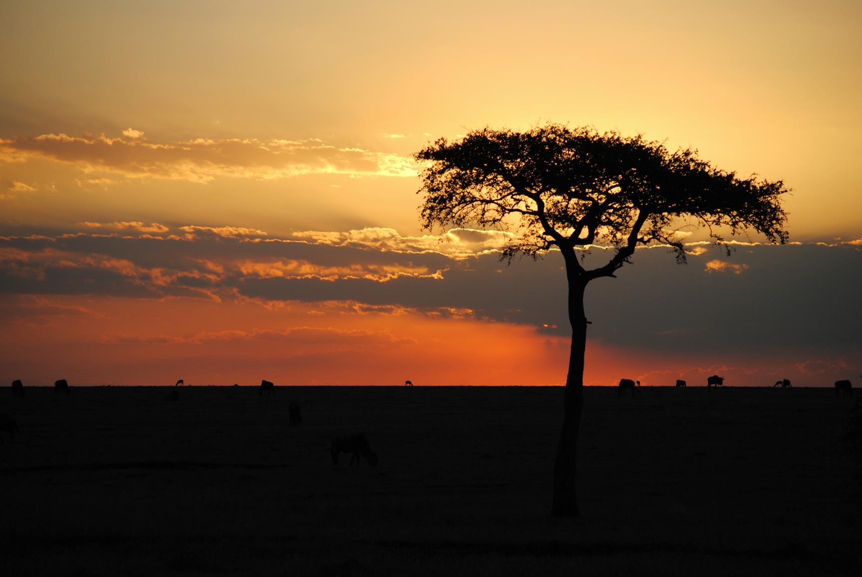 atardecer-masai-mara