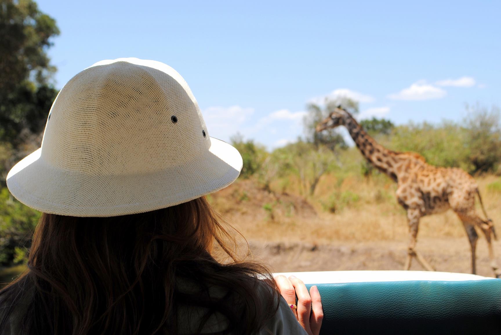 jirafas-safari-masai-mara