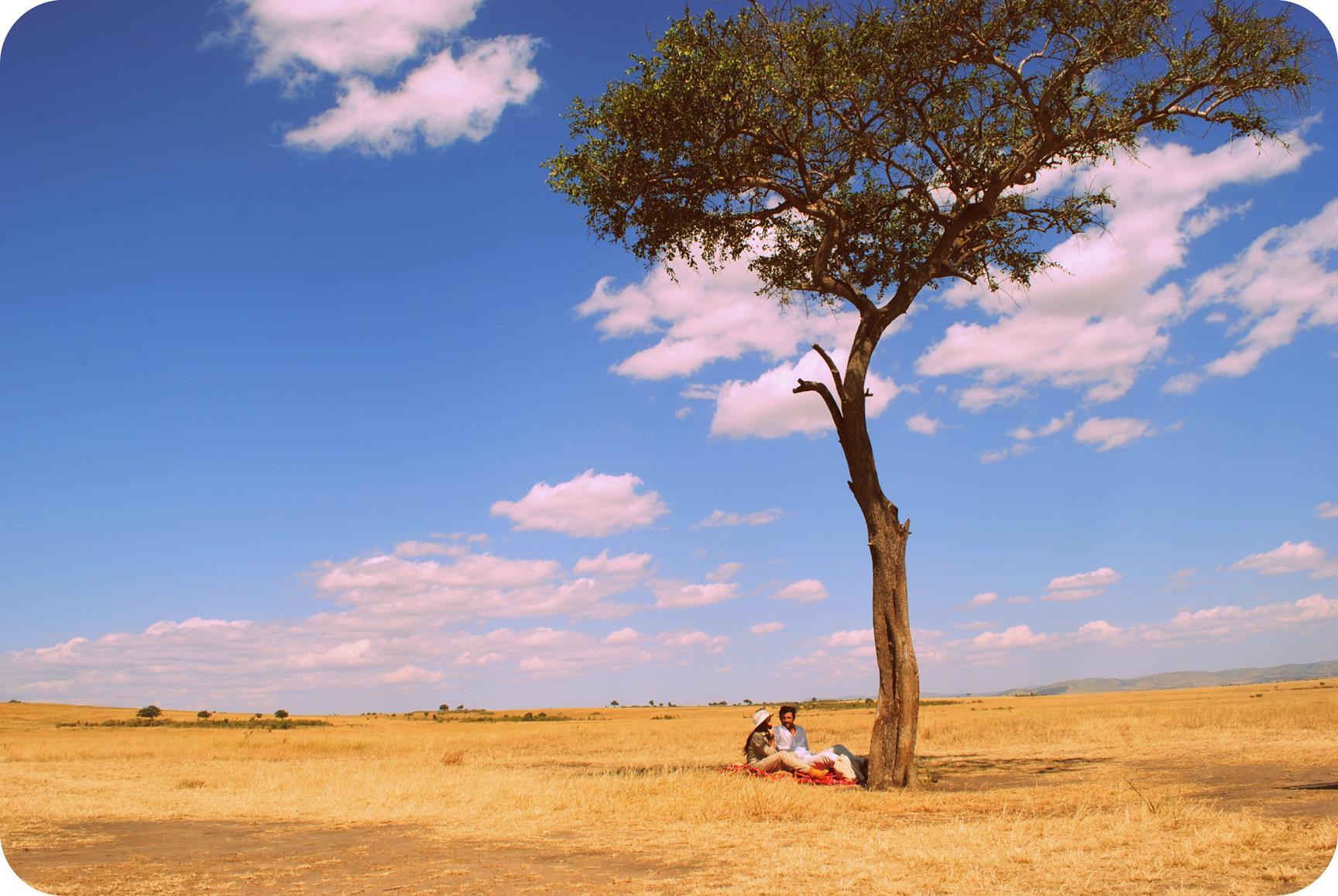 picnic-masai-mara-3