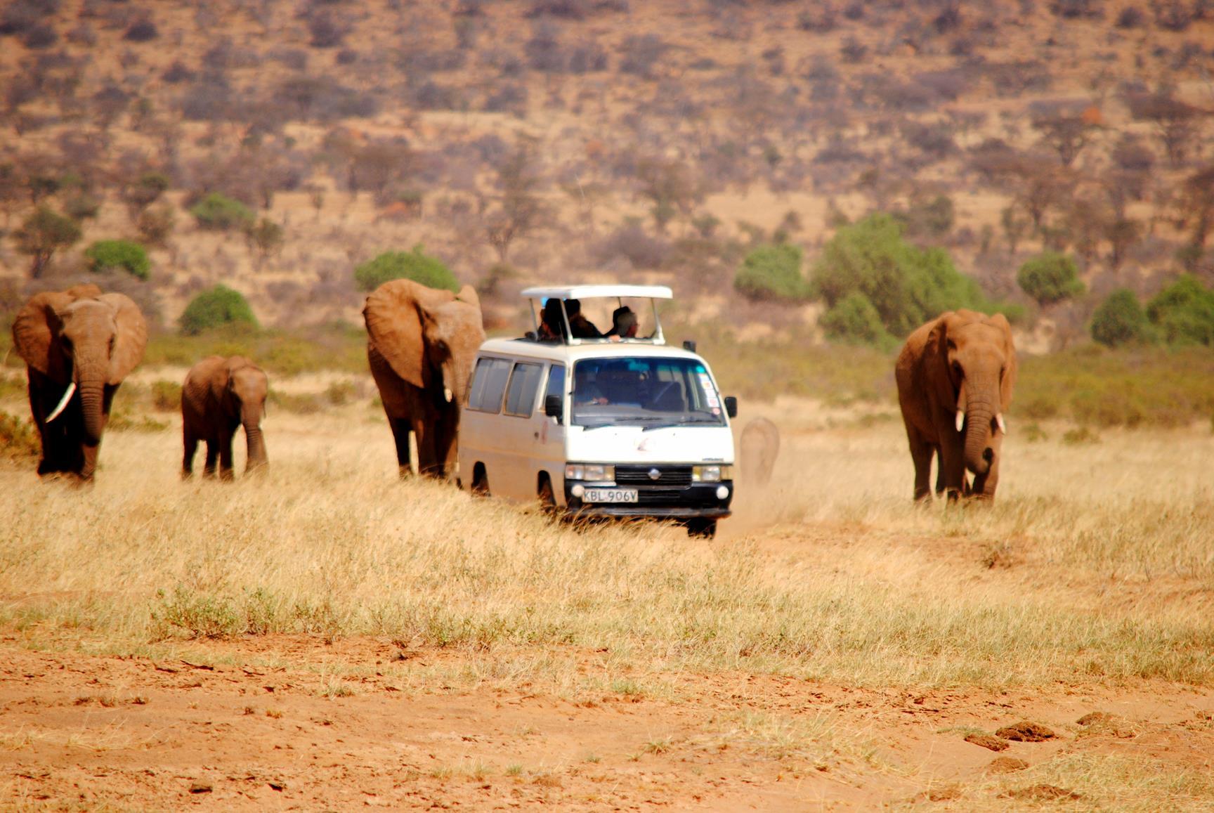masikio-safaris-kenya-2