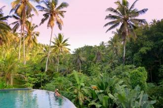 Nadando en el corazón de la selva. Ubud, Bali, 2016