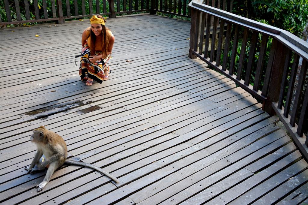 que-ver-bali-monkey-forest-1