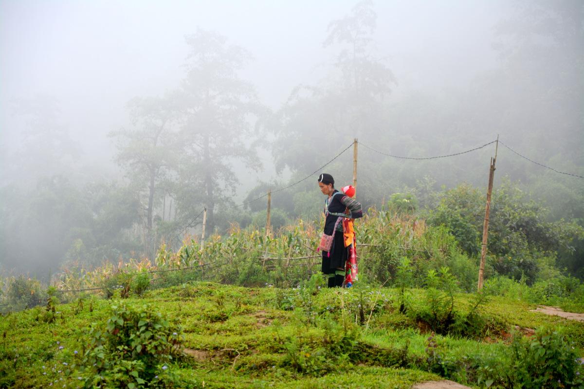 que ver vietnam sapa